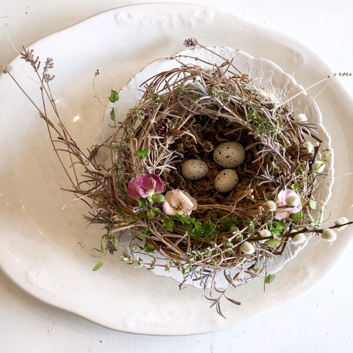 Foraging Happiness Diy Bird Nest Lecultivateur